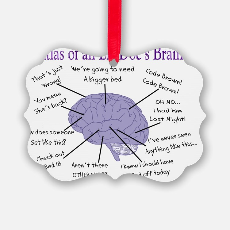 Atlas of an ER Docs Brain Ornament
