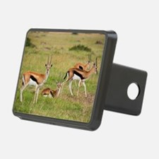 greeting-card Hitch Cover