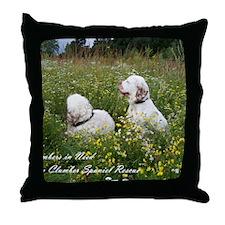 CINClumbersCvr Throw Pillow