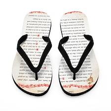 desiderata Flip Flops