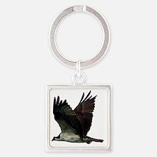 Osprey Square Keychain