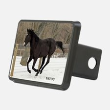 PUZZLE-BAYOU Hitch Cover