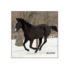 "PUZZLE-BAYOU Square Sticker 3"" x 3"""