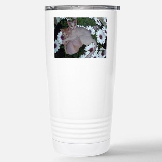 Cat-FlowerPot Stainless Steel Travel Mug