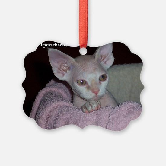 Cutie-Laptop Ornament