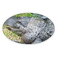 Louisiana Gator Decal