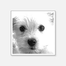 """1212 cute dog face by vampi Square Sticker 3"""" x 3"""""""