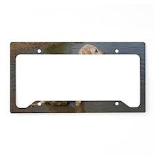 IMG_6180 License Plate Holder