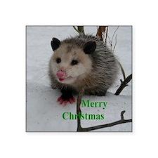 "Snow Possum Square Sticker 3"" x 3"""
