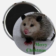 Snow Possum Magnet