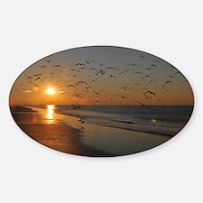 beach-calendar2012-earlybirds Decal