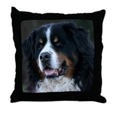 wc_jan Throw Pillow
