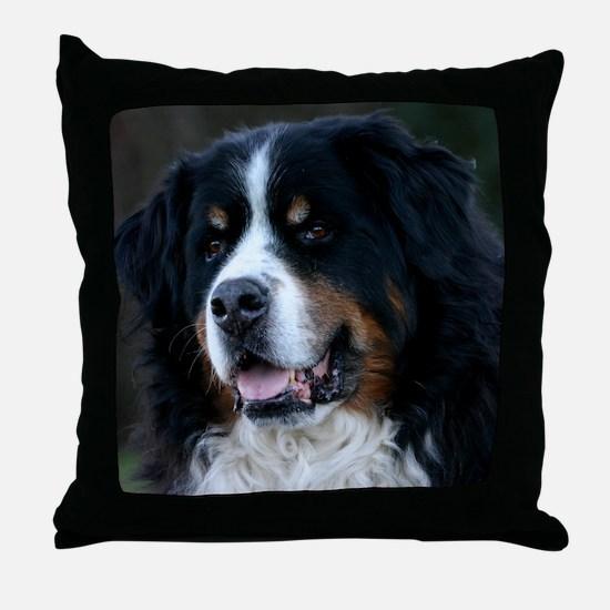 wc_jan Throw Pillow