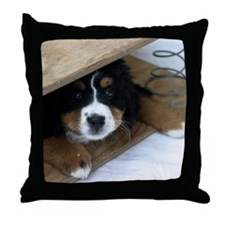 wc_nov Throw Pillow