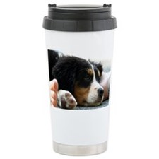 wc_aug Travel Mug