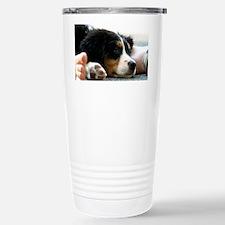 wc_aug Travel Mug