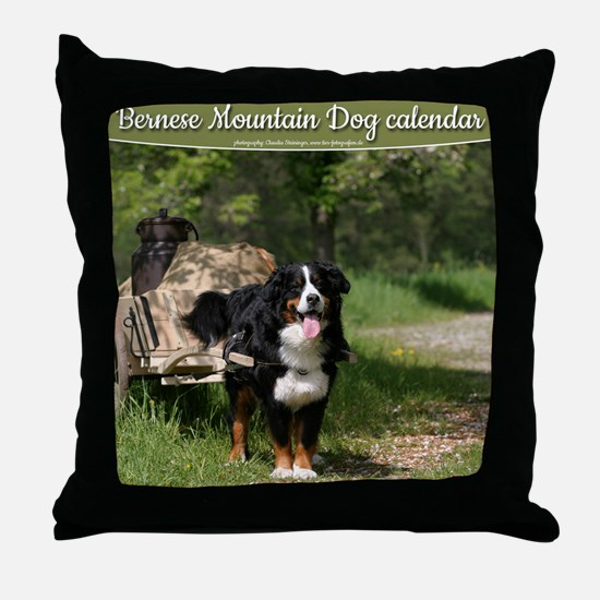 wc_front Throw Pillow