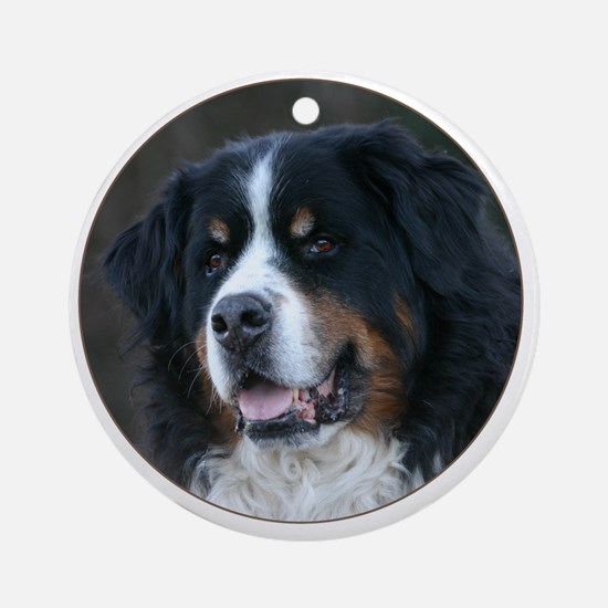 bernese_round Round Ornament