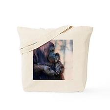 1_IMG_8016 Tote Bag