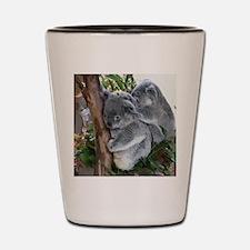 7_IMG_7756 Shot Glass