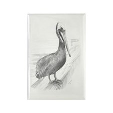 Pelican Pencil Drawing by Brooke  Rectangle Magnet