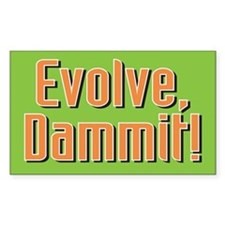 Evolution - Rectangle Decal