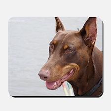 Paint river dog Mousepad
