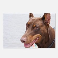 Paint river dog Postcards (Package of 8)
