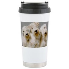 big3 copy Travel Mug
