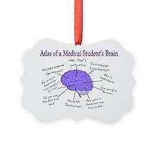 Atlas of a Medical Students Brain Ornament