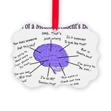 Atlas of a Medical Students Brain Picture Ornament