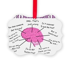 Atlas of a med student brain PINK Picture Ornament