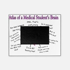 Atlas of a med student brain PINK Picture Frame