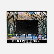 Central Park 3 Picture Frame