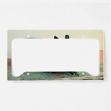 TapirWA Shoulder License Plate Holder