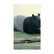 TapirWA Ipad Decal