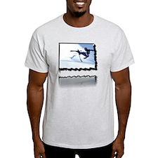 2011-12-06_iPX_Ski_wipeout_2_2Kx2246 T-Shirt