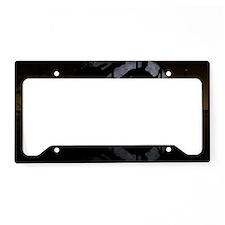 panels5 License Plate Holder