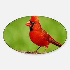 cardinal_cafe Decal