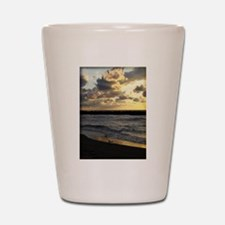 Seagull with Lake Erie Sunset Shot Glass