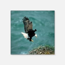"eagle_nest_cafe Square Sticker 3"" x 3"""