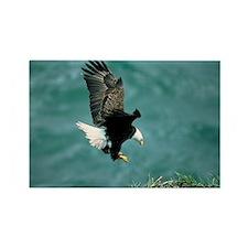eagle_nest_cafe Rectangle Magnet