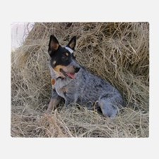 Australian Blue Heeler Pup Throw Blanket