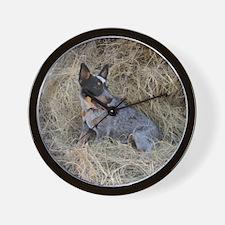 Australian Blue Heeler Pup Wall Clock