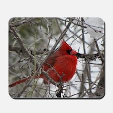 Red Bird Mousepad