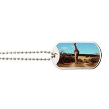 Spioenkop Dam and Nature Reserve Dog Tags