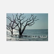 postcard edisto ghost trees Rectangle Magnet
