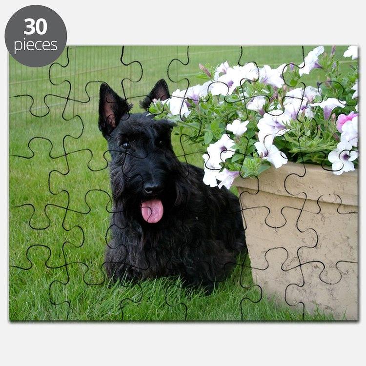 DuganPetunias Puzzle