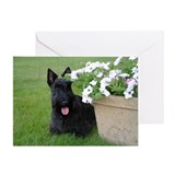 Scottie dog Greeting Cards