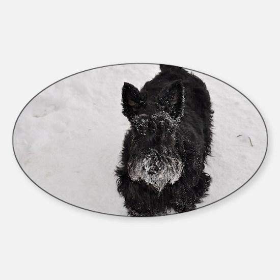 snowpiper Sticker (Oval)